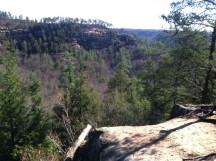 My view after a night of  quality sleep on a backpacking trip at Red River Gorge.